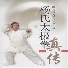 杨氏太极拳真传 - 赵斌